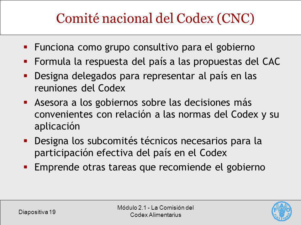 Diapositiva 19 Módulo 2.1 - La Comisión del Codex Alimentarius Comité nacional del Codex (CNC) Funciona como grupo consultivo para el gobierno Formula