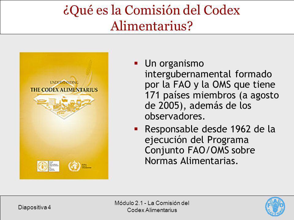 Diapositiva 4 Módulo 2.1 - La Comisión del Codex Alimentarius ¿Qué es la Comisión del Codex Alimentarius? Un organismo intergubernamental formado por