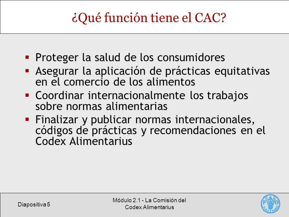 Diapositiva 5 Módulo 2.1 - La Comisión del Codex Alimentarius ¿Qué función tiene el CAC? Proteger la salud de los consumidores Asegurar la aplicación