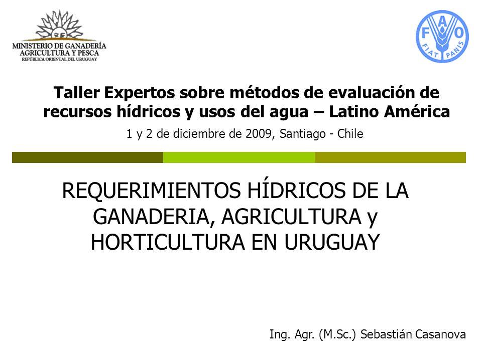 REQUERIMIENTOS HÍDRICOS DE LA GANADERIA, AGRICULTURA y HORTICULTURA EN URUGUAY Taller Expertos sobre métodos de evaluación de recursos hídricos y usos