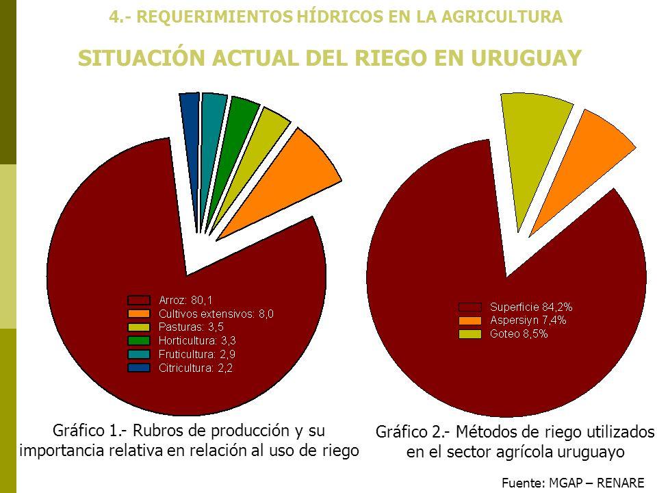 SITUACIÓN ACTUAL DEL RIEGO EN URUGUAY Fuente: MGAP – RENARE 4.- REQUERIMIENTOS HÍDRICOS EN LA AGRICULTURA Gráfico 1.- Rubros de producción y su import