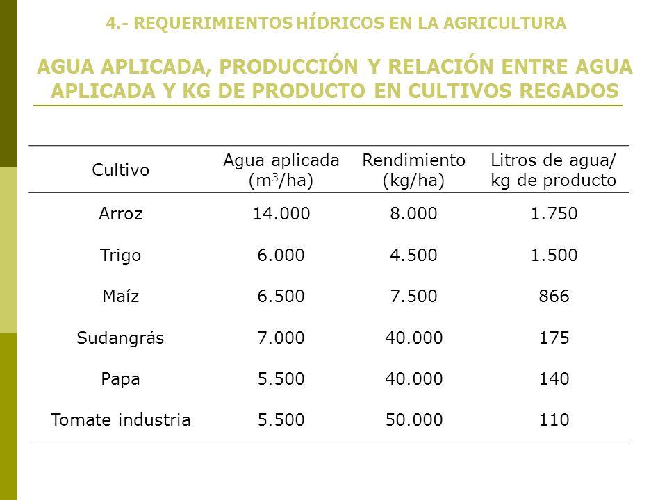 AGUA APLICADA, PRODUCCIÓN Y RELACIÓN ENTRE AGUA APLICADA Y KG DE PRODUCTO EN CULTIVOS REGADOS Cultivo Agua aplicada (m 3 /ha) Rendimiento (kg/ha) Litr