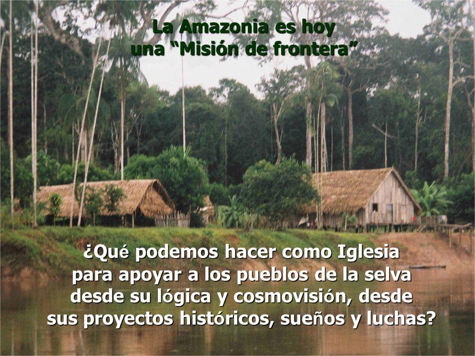 ¿Qu é podemos hacer como Iglesia para apoyar a los pueblos de la selva desde su l ó gica y cosmovisi ó n, desde sus proyectos hist ó ricos, sue ñ os y
