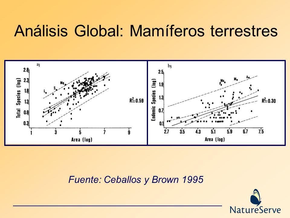 Análisis Global: Mamíferos terrestres Fuente: Ceballos y Brown 1995