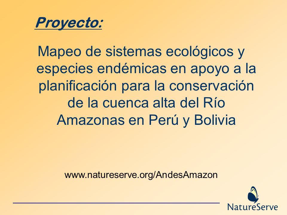Mapeo de sistemas ecológicos y especies endémicas en apoyo a la planificación para la conservación de la cuenca alta del Río Amazonas en Perú y Bolivi