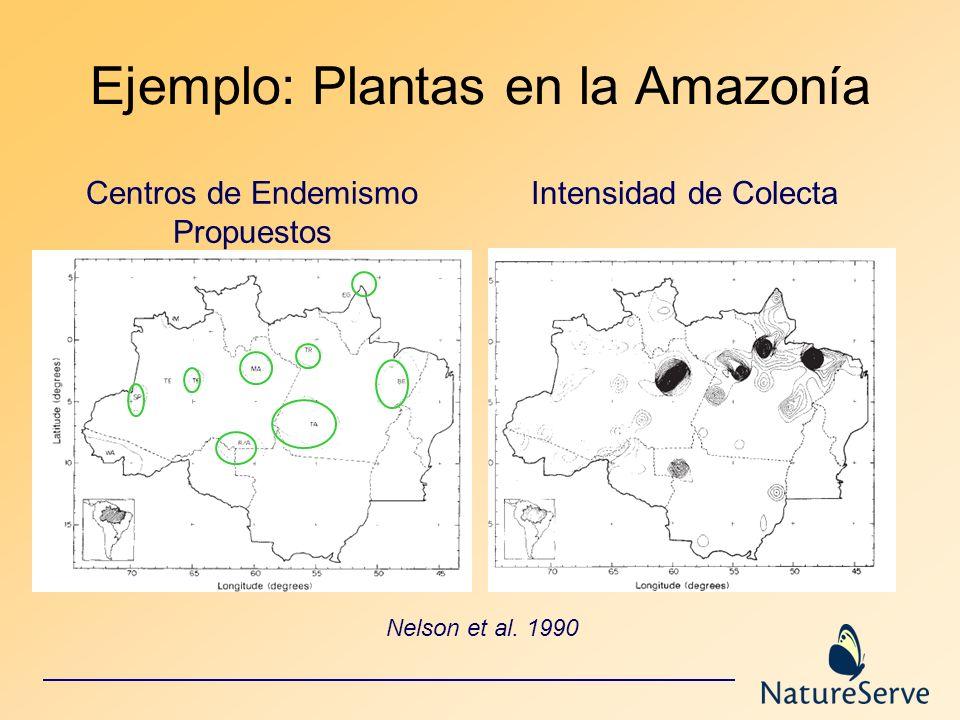 Nelson et al. 1990 Centros de Endemismo Propuestos Ejemplo: Plantas en la Amazonía Intensidad de Colecta