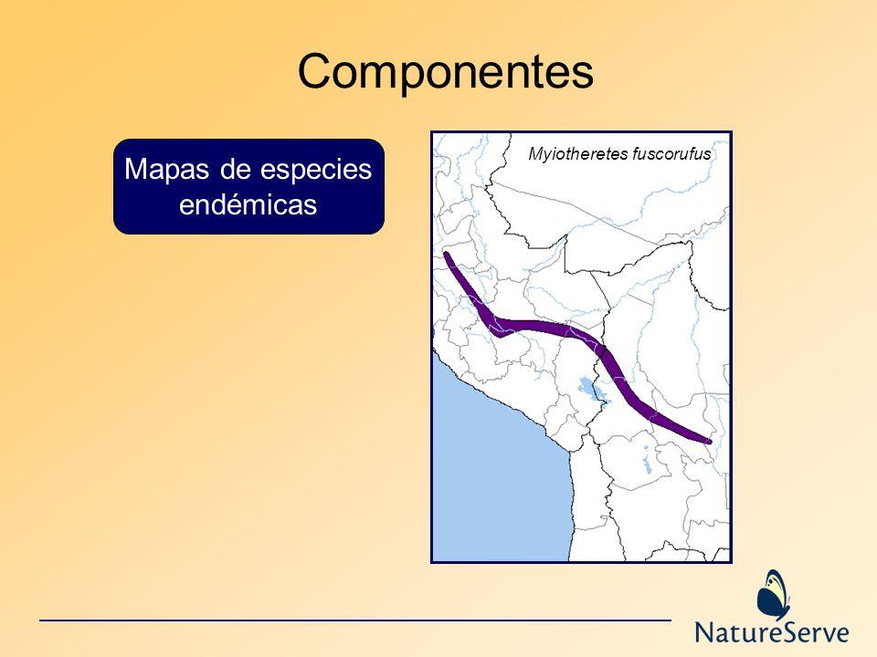 Componentes Mapas de especies endémicas Myiotheretes fuscorufus