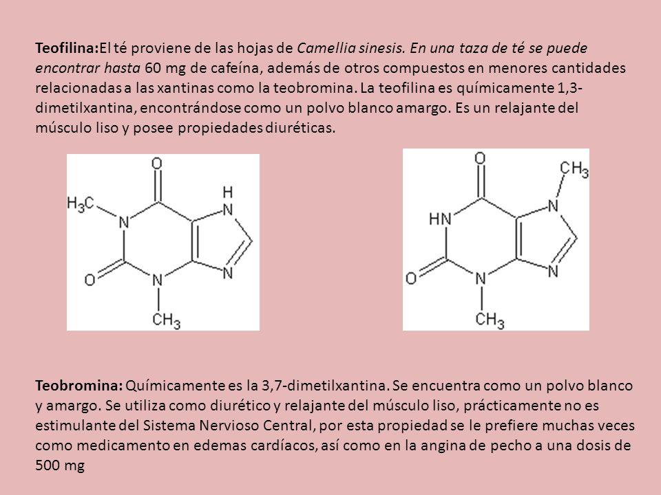 Teofilina:El té proviene de las hojas de Camellia sinesis. En una taza de té se puede encontrar hasta 60 mg de cafeína, además de otros compuestos en