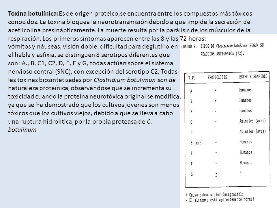 vómitos y náuseas, visión doble, dificultad para deglutir o en el habla y asfixia. se distinguen 8 serotipos diferentes que son: A., B, C1, C2, D, E,