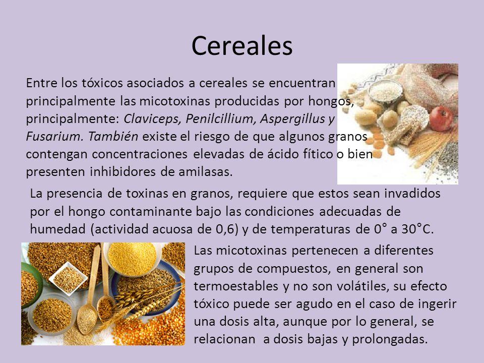 Cereales Entre los tóxicos asociados a cereales se encuentran principalmente las micotoxinas producidas por hongos, principalmente: Claviceps, Penilci