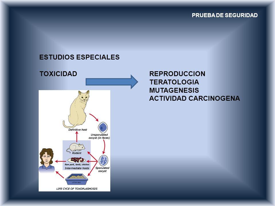 PRUEBA DE SEGURIDAD ESTUDIOS ESPECIALES TOXICIDAD REPRODUCCION TERATOLOGIA MUTAGENESIS ACTIVIDAD CARCINOGENA