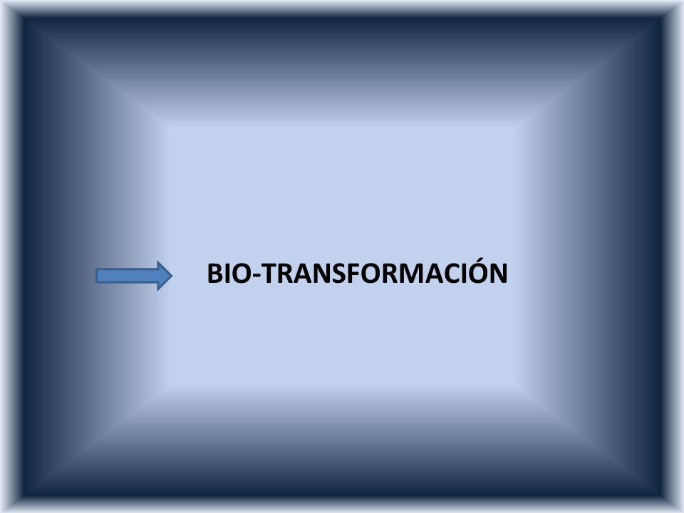 BIO-TRANSFORMACIÓN
