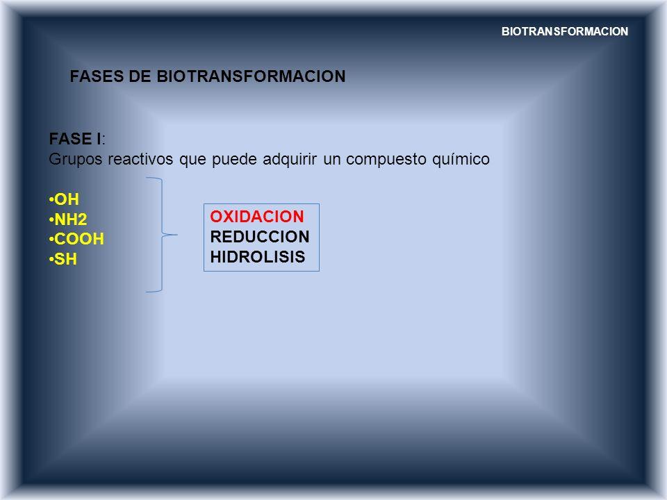 FASES DE BIOTRANSFORMACION FASE I: Grupos reactivos que puede adquirir un compuesto químico OH NH2 COOH SH OXIDACION REDUCCION HIDROLISIS BIOTRANSFORM