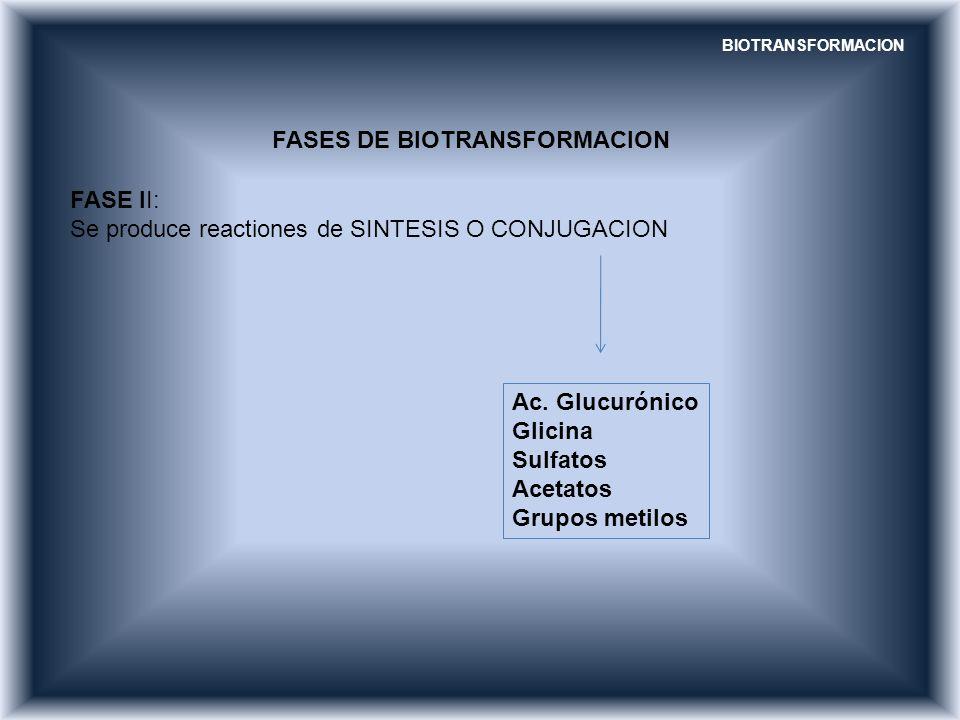 FASES DE BIOTRANSFORMACION FASE II: Se produce reactiones de SINTESIS O CONJUGACION Ac. Glucurónico Glicina Sulfatos Acetatos Grupos metilos BIOTRANSF