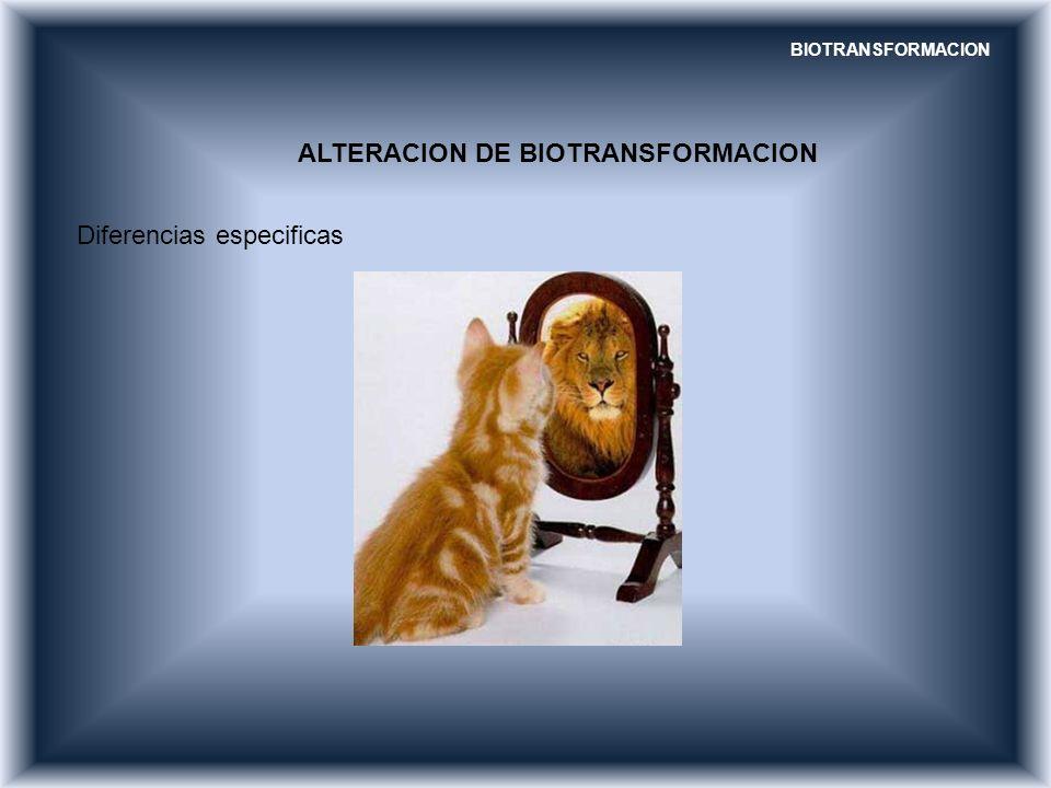 ALTERACION DE BIOTRANSFORMACION Diferencias especificas