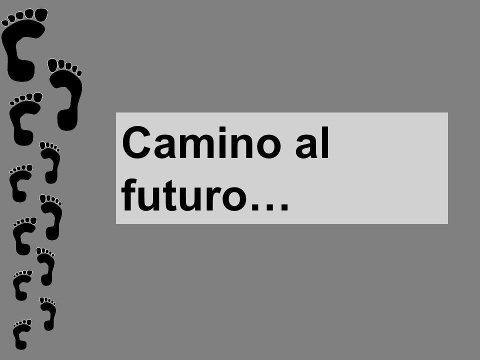Camino al futuro…