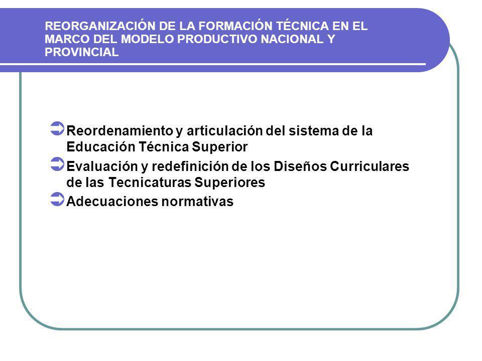 REORGANIZACIÓN DE LA FORMACIÓN TÉCNICA EN EL MARCO DEL MODELO PRODUCTIVO NACIONAL Y PROVINCIAL Reordenamiento y articulación del sistema de la Educación Técnica Superior Evaluación y redefinición de los Diseños Curriculares de las Tecnicaturas Superiores Adecuaciones normativas