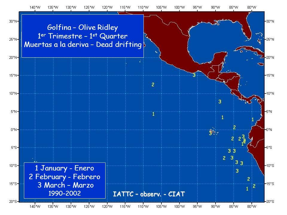 Golfina – Olive Ridley 1 er Trimestre – 1 st Quarter Muertas a la deriva – Dead drifting 1 January - Enero 2 February - Febrero 3 March – Marzo 1990-2002 IATTC – observ.