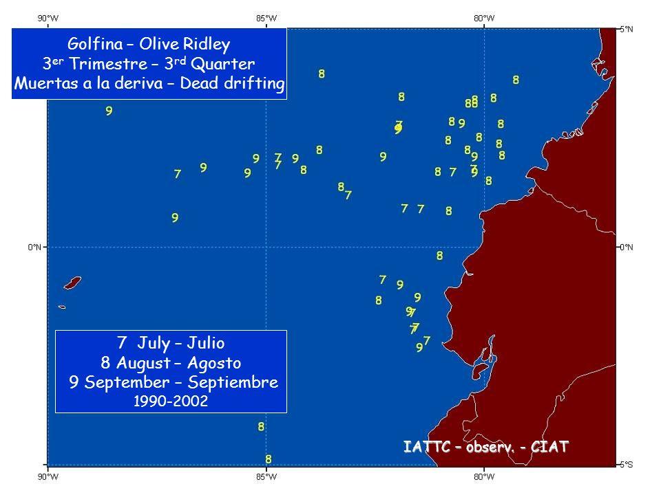 Golfina – Olive Ridley 3 er Trimestre – 3 rd Quarter Muertas a la deriva – Dead drifting 7 July – Julio 8 August – Agosto 9 September – Septiembre 1990-2002 IATTC – observ.