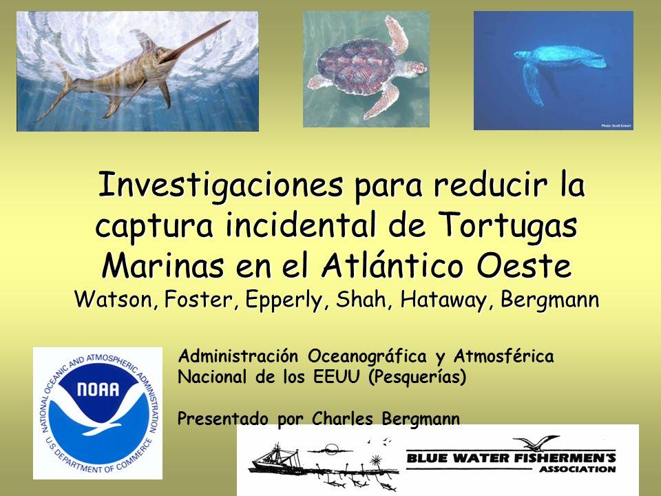 Investigaciones para reducir la captura incidental de Tortugas Marinas en el Atlántico Oeste Watson, Foster, Epperly, Shah, Hataway, Bergmann Investig