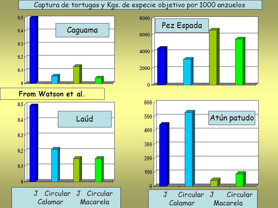 Caguama Laúd Pez Espada Atún patudo Captura de tortugas y Kgs. de especie objetivo por 1000 anzuelos J Circular J Circular Calamar Macarela J Circular