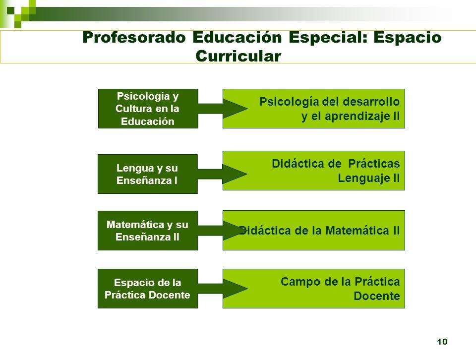10 Profesorado Educación Especial: Espacio Curricular Psicología del desarrollo y el aprendizaje II Didáctica de Prácticas Lenguaje II Didáctica de la