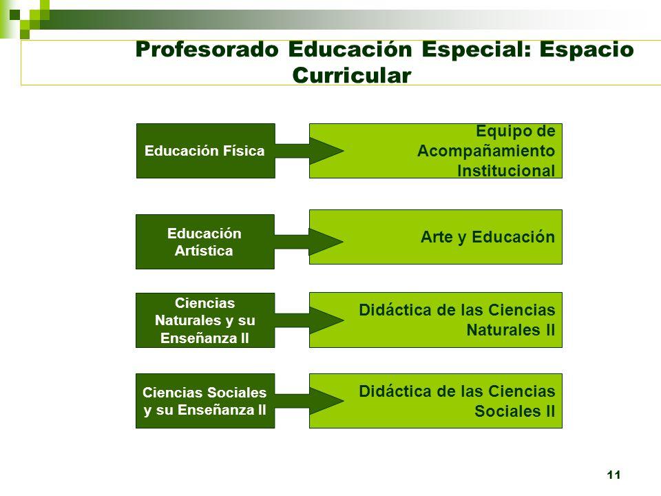 11 Profesorado Educación Especial: Espacio Curricular Equipo de Acompañamiento Institucional Arte y Educación Didáctica de las Ciencias Naturales II D