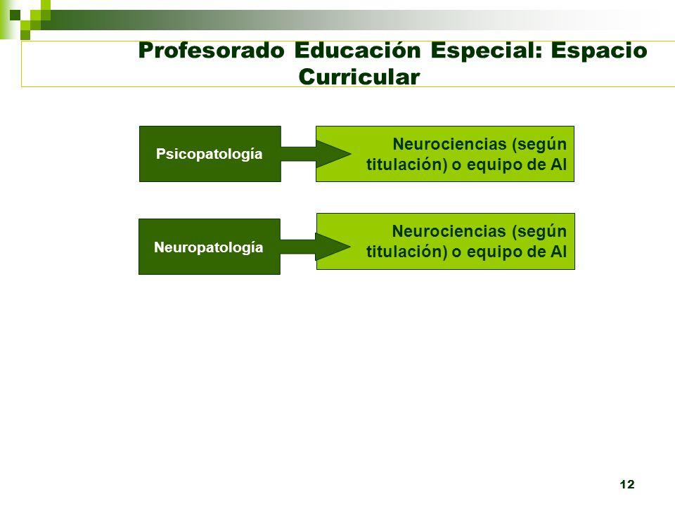 12 Profesorado Educación Especial: Espacio Curricular Neurociencias (según titulación) o equipo de AI Psicopatología Neuropatología