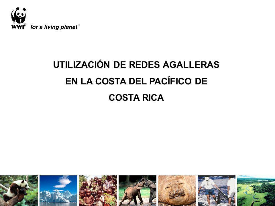 UTILIZACIÓN DE REDES AGALLERAS EN LA COSTA DEL PACÍFICO DE COSTA RICA