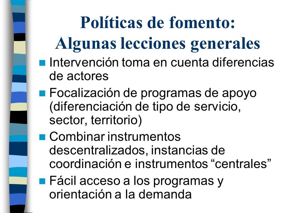 Políticas de fomento: Algunas lecciones generales Intervención toma en cuenta diferencias de actores Focalización de programas de apoyo (diferenciación de tipo de servicio, sector, territorio) Combinar instrumentos descentralizados, instancias de coordinación e instrumentos centrales Fácil acceso a los programas y orientación a la demanda