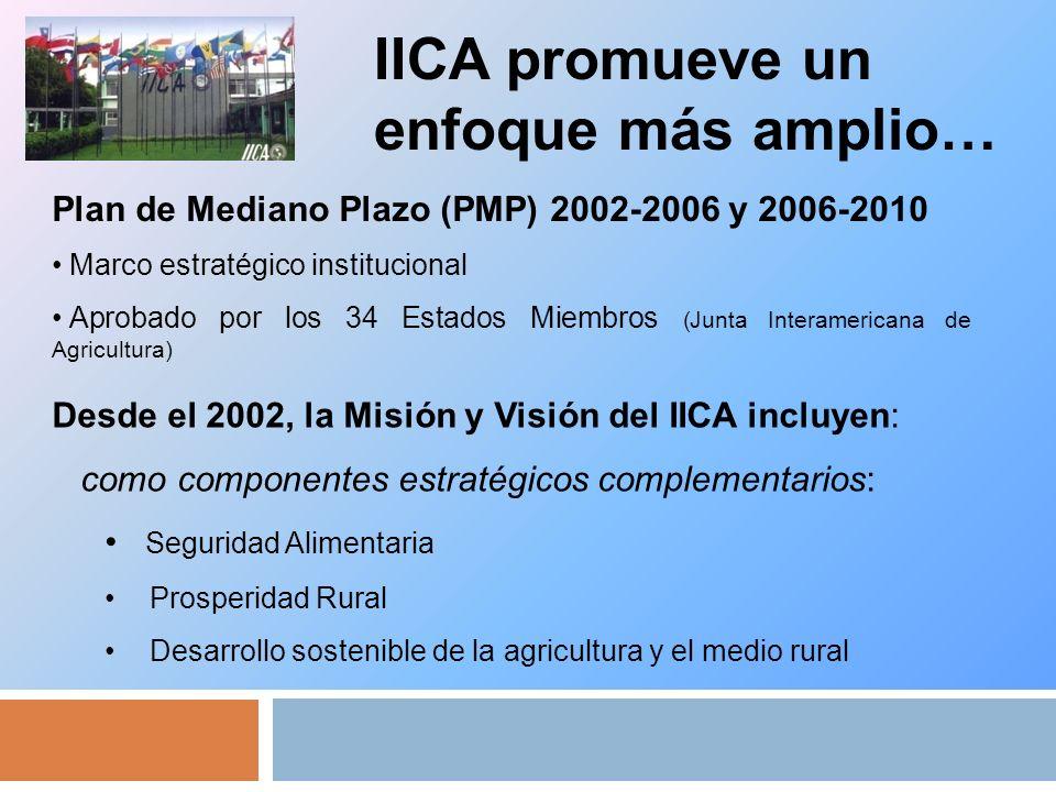 IICA promueve un enfoque más amplio… Plan de Mediano Plazo (PMP) 2002-2006 y 2006-2010 Marco estratégico institucional Aprobado por los 34 Estados Miembros (Junta Interamericana de Agricultura) Desde el 2002, la Misión y Visión del IICA incluyen: como componentes estratégicos complementarios: Seguridad Alimentaria Prosperidad Rural Desarrollo sostenible de la agricultura y el medio rural