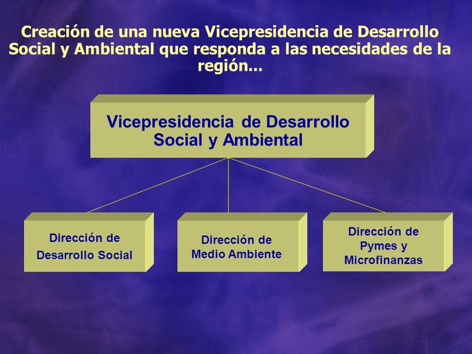 Vicepresidencia de Desarrollo Social y Ambiental Creación de una nueva Vicepresidencia de Desarrollo Social y Ambiental que responda a las necesidades de la región...