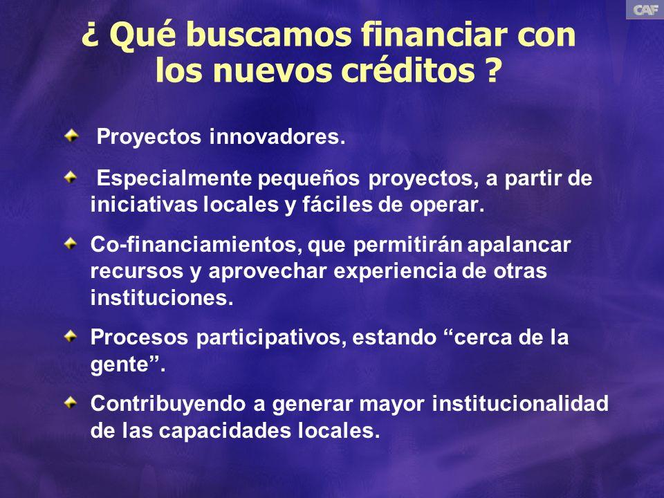 ¿ Qué buscamos financiar con los nuevos créditos .