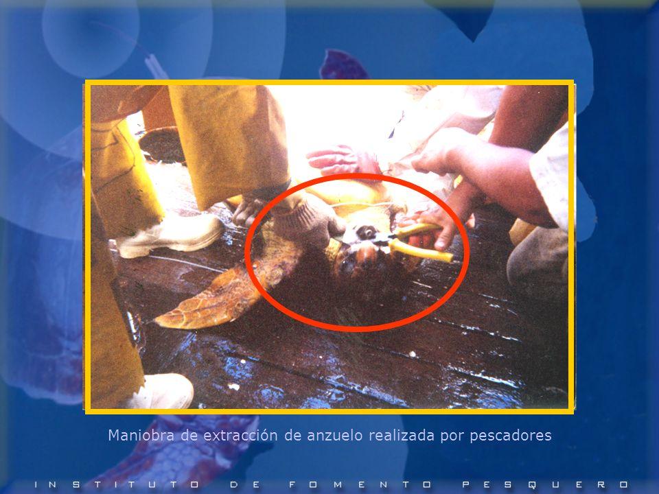 Maniobra de extracción de anzuelo realizada por pescadores