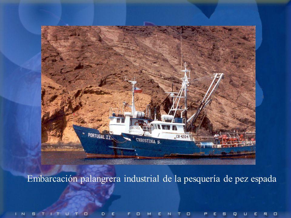 Embarcación palangrera industrial de la pesquería de pez espada