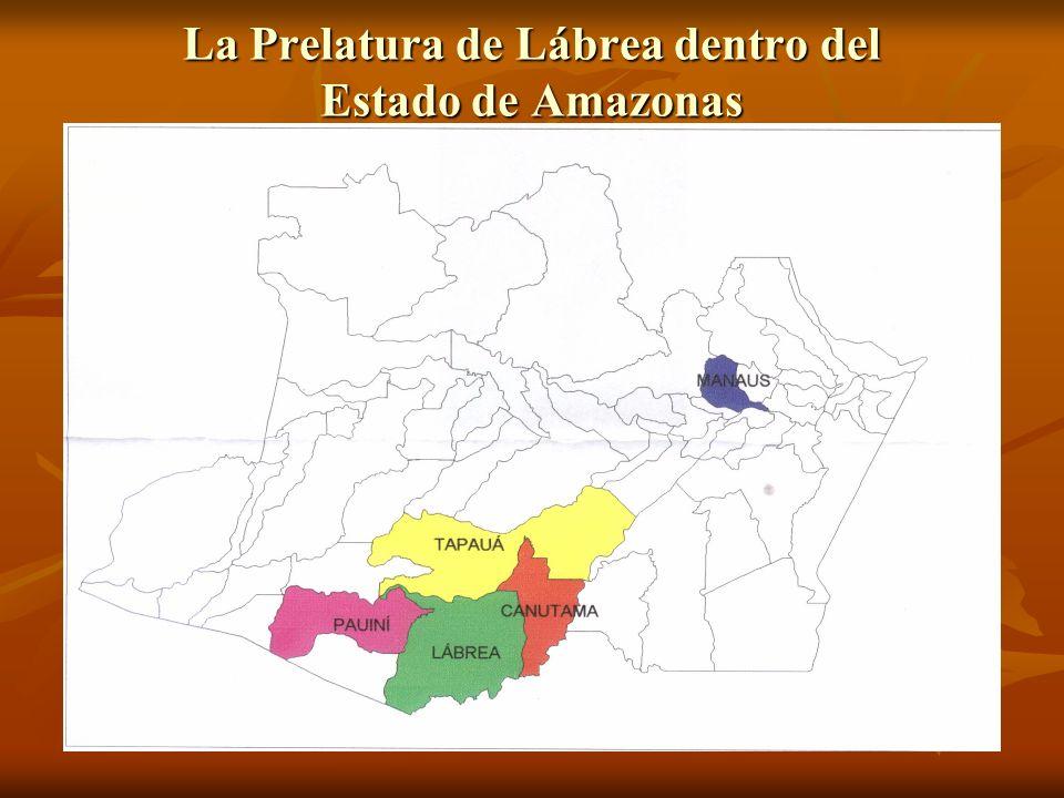 Municipio de Pauini Área: 43.263,44 Km2 Habitantes: 17.143 Área: 43.263,44 Km2 Habitantes: 17.143 População urbana: 6.982 População rural: 10.161