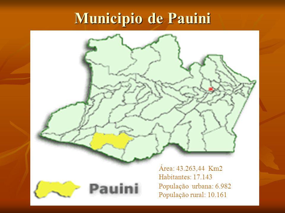 Curso de formación de líderes de Pastoral del Niño en la ciudad de Pauini