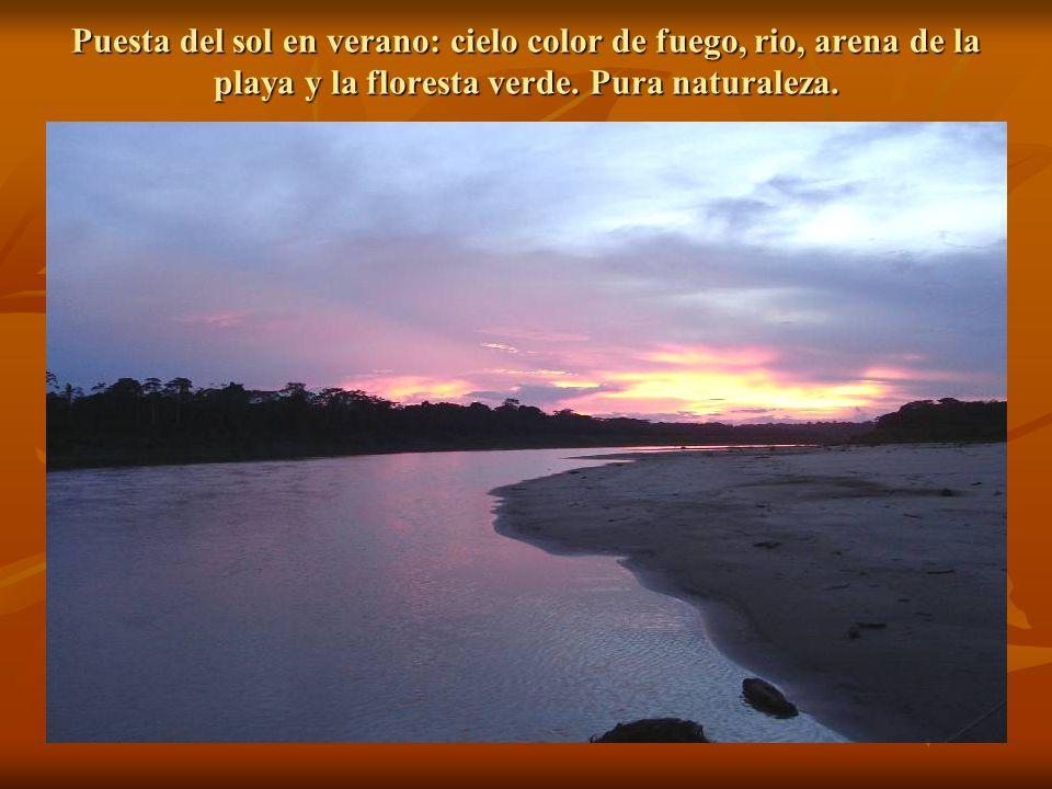 Bautizando en San Luis, rio Atucatuquini
