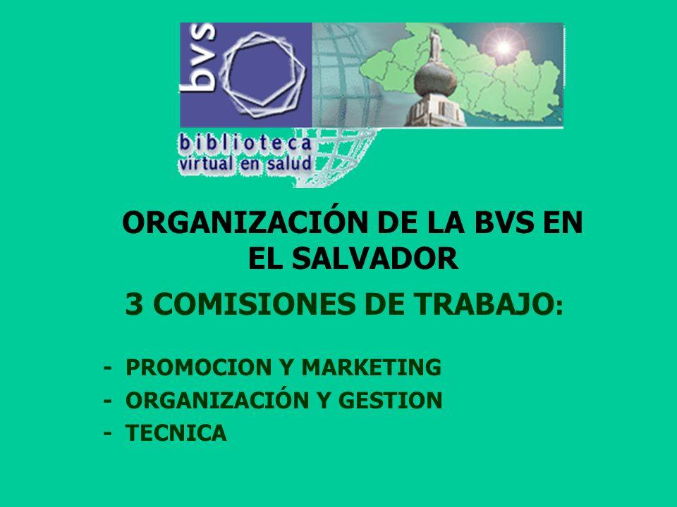 PLAN DE ACCION 2001 DE LA BVS PROMOCION DE LA BVS EL SALVADOR ALIANZAS INSTITUCIONALES PARTICIPACION ACTIVA DE 4 INSTITUCIONES ESPEJO CAPACITACION EN EL MANEJO DE LA BVS SELECCIÓN DE MATERIAL BIBLIOGRAFICO