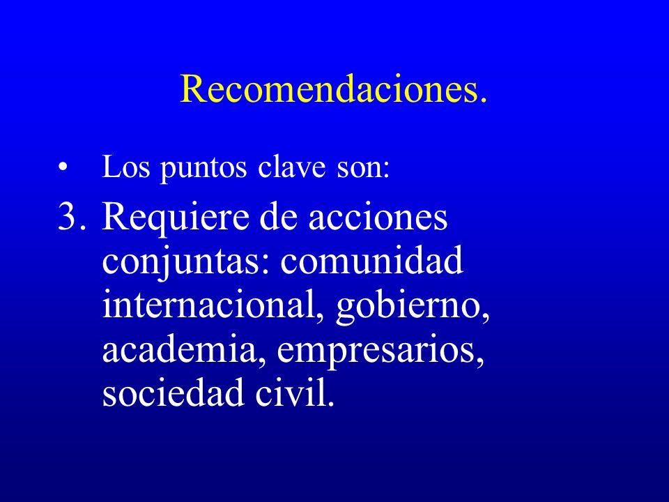 Recomendaciones. Los puntos clave son: 3.Requiere de acciones conjuntas: comunidad internacional, gobierno, academia, empresarios, sociedad civil.