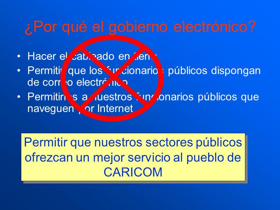 ¿Por qué el gobierno electrónico? Hacer el cableado en tierra Permitir que los funcionarios públicos dispongan de correo electrónico Permitirles a nue