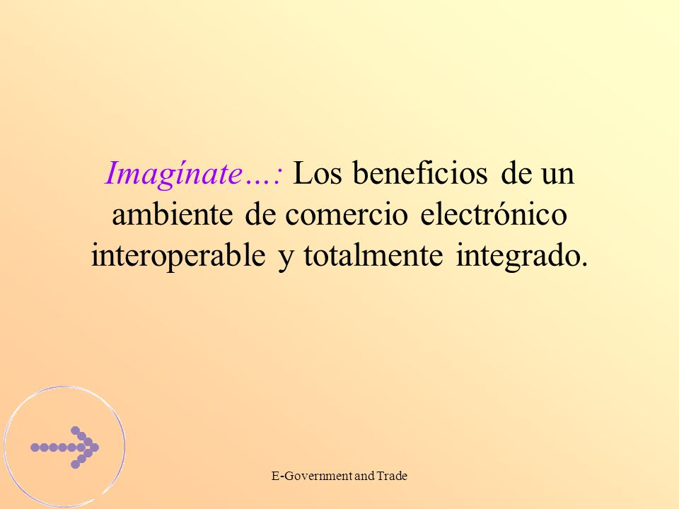 E-Government and Trade Imagínate…: Los beneficios de un ambiente de comercio electrónico interoperable y totalmente integrado.