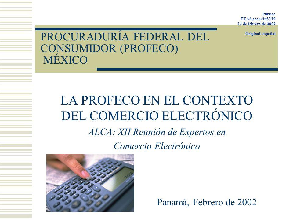 PROCURADURÍA FEDERAL DEL CONSUMIDOR (PROFECO) MÉXICO LA PROFECO EN EL CONTEXTO DEL COMERCIO ELECTRÓNICO ALCA: XII Reunión de Expertos en Comercio Elec