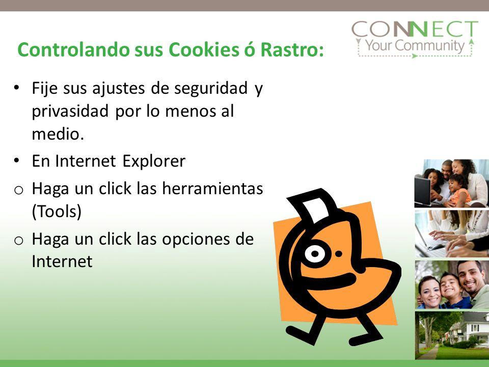 Controlando sus Cookies ó Rastro: Fije sus ajustes de seguridad y privasidad por lo menos al medio.