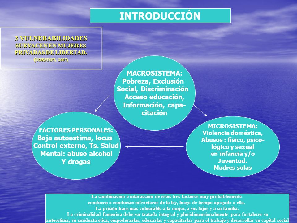 3 VULNERABILIDADES SUBYACEN EN MUJERES PRIVADAS DE LIBERTAD. ( CORSTON, 2007) MACROSISTEMA: Pobreza, Exclusión Social, Discriminación Acceso educación