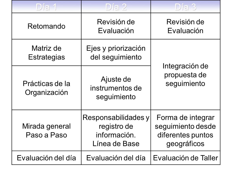 Día 1 Día 2 Día 3 Retomando Revisión de Evaluación Matriz de Estrategias Ejes y priorización del seguimiento Integración de propuesta de seguimiento Prácticas de la Organización Ajuste de instrumentos de seguimiento Mirada general Paso a Paso Responsabilidades y registro de información.