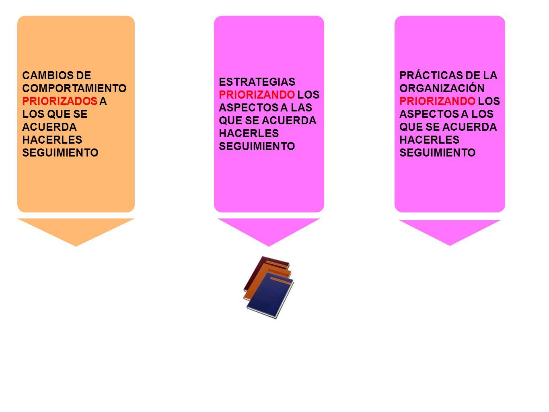 CAMBIOS DE COMPORTAMIENTO PRIORIZADOS A LOS QUE SE ACUERDA HACERLES SEGUIMIENTO PRÁCTICAS DE LA ORGANIZACIÓN PRIORIZANDO LOS ASPECTOS A LOS QUE SE ACUERDA HACERLES SEGUIMIENTO ESTRATEGIAS PRIORIZANDO LOS ASPECTOS A LAS QUE SE ACUERDA HACERLES SEGUIMIENTO Los diarios son los instrumentos en los que se consigna la información, recordando que en primera instancia ofrecen un formato relativamente fácil de llenar, de carácter abierto y que puede ser modificado a conveniencia.