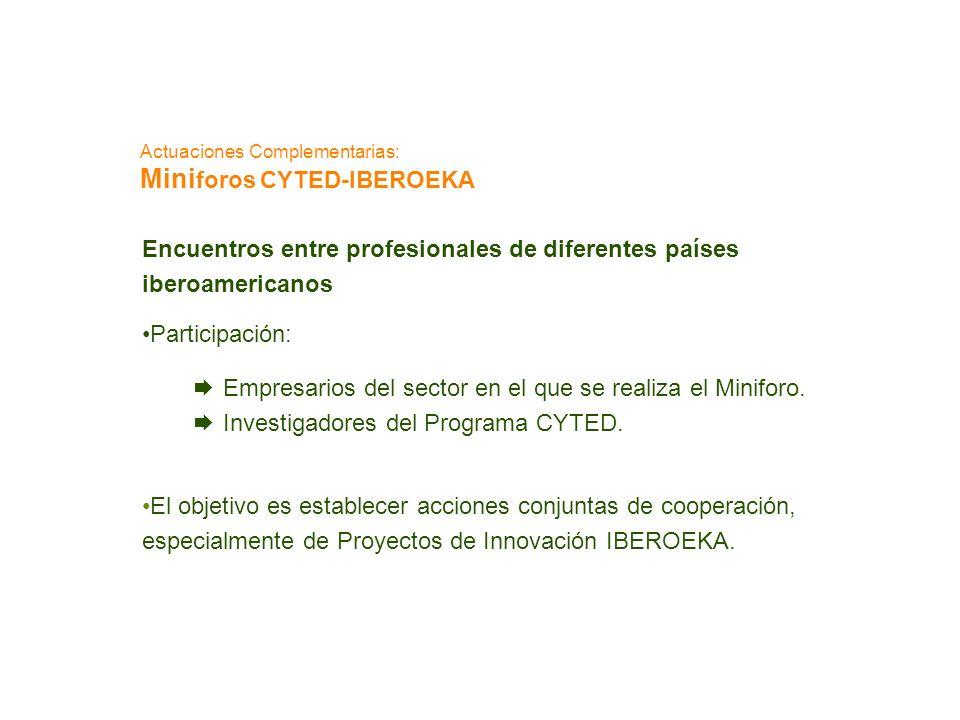 Actuaciones Complementarias: Mini foros CYTED-IBEROEKA Encuentros entre profesionales de diferentes países iberoamericanos Participación: Empresarios