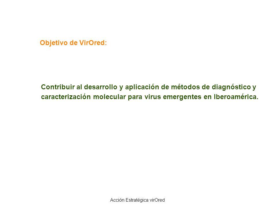 Objetivo de VirOred: Contribuir al desarrollo y aplicación de métodos de diagnóstico y caracterización molecular para virus emergentes en Iberoamérica