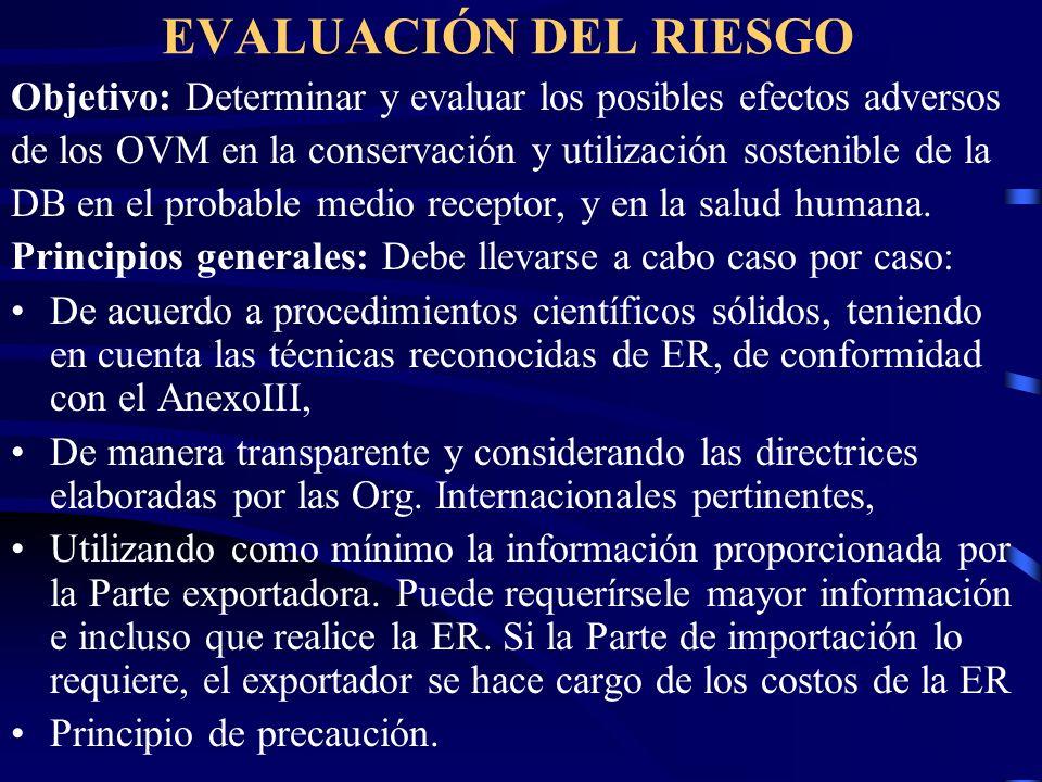 EVALUACIÓN DEL RIESGO Objetivo: Determinar y evaluar los posibles efectos adversos de los OVM en la conservación y utilización sostenible de la DB en